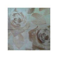 Dekor Desert Rose Ivory set - 2 20x50