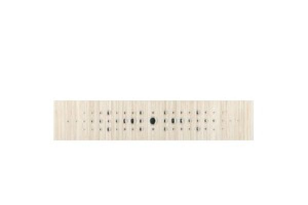 Listela 525L059P Spots 5x25